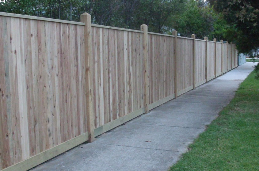 Paling Fencing | That's Fencing | Eastern Suburbs | Timber Fencing Specialist